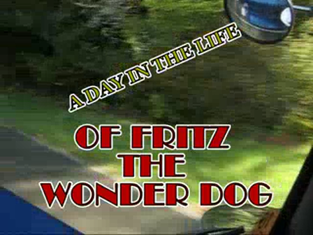 A DAY IN THE LIFE OF FRITZ THE WONDER DOG