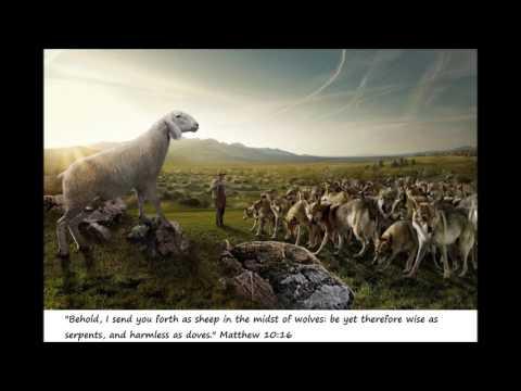 πρόβατα ανάμεσα σε λύκους - 27/2/17