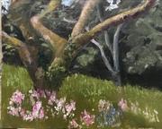 Orchard Kilmacthomas