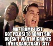 Mr. Trump &  Pelosi