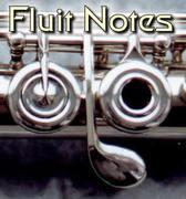 Chris Fluit