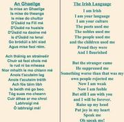 I am the Irish Language