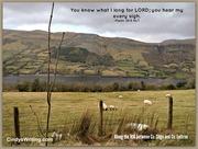 Psalm 38 N16 hills