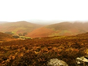On the road to the Sally Gap, Wicklow Mountains, Ireland