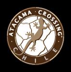 Atacama Crossing (Chile) 2014