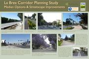 Median Options & Streetscape_La Brea Corridor Planning Study