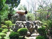 Jardim,Mazomba RJ
