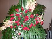 Flores, jardins da alma!