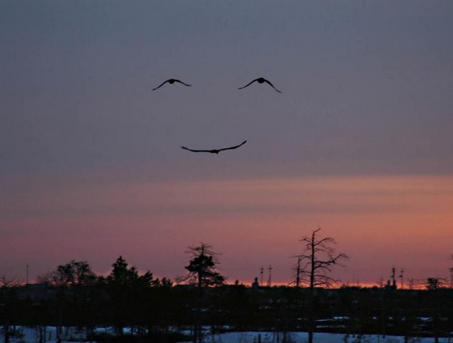 Sorriso de Deus