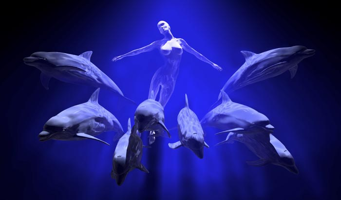 Golfinhos e minha LUZ