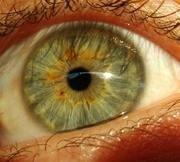 meu olho