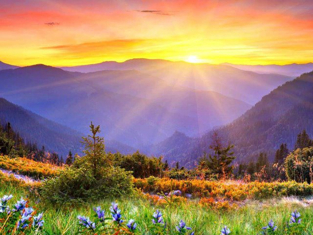 Nao viva uma vida  sem propósito, mas encontre o propósito de DEUS para sua vida!