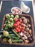 A Midsummer Celebration of the Kitchen Garden