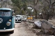 1st Annual Mount Withington Snow Adventure - Magdelena, NM
