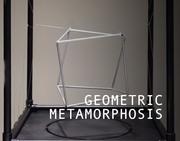 Geometric Metamorphosis | Dynamic Environments