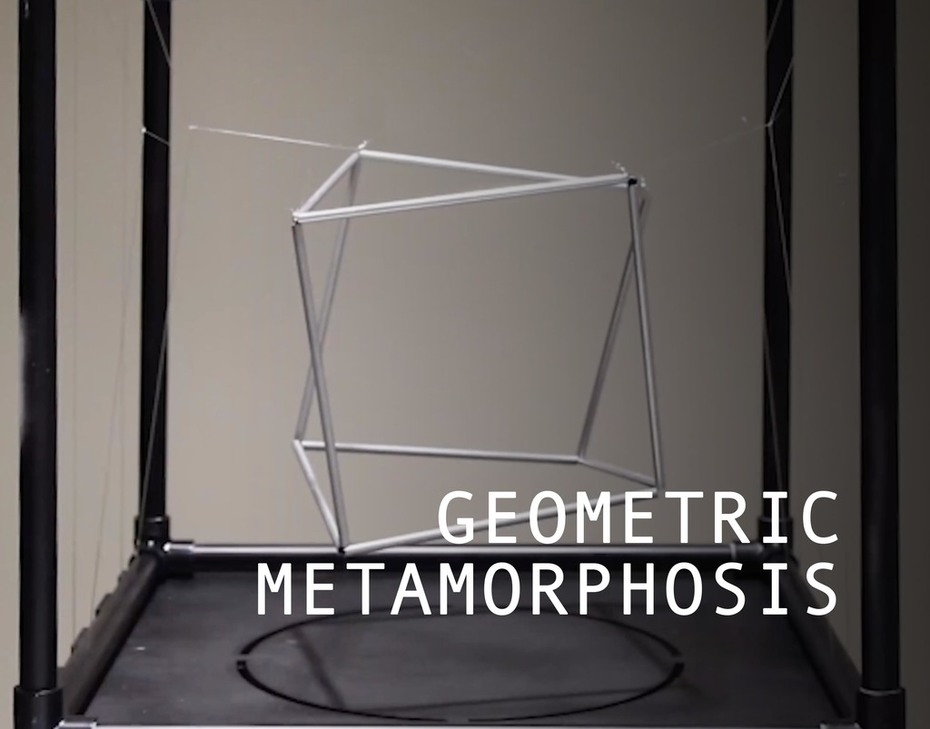 Geometric Metamorphosis | Dynamic Environments