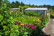 Garden Group in South Burnaby seeks members