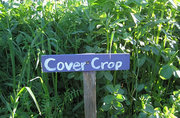 Cover Cropping Workshop