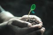 Healthy Soils, Healthy Humans