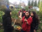 *Organic Gardening Open House