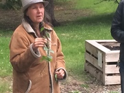 *Native Edibles Walk and Talk (low cost workshop; FREE for Seniors)