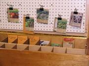 *Seed Saving - Free Workshop!