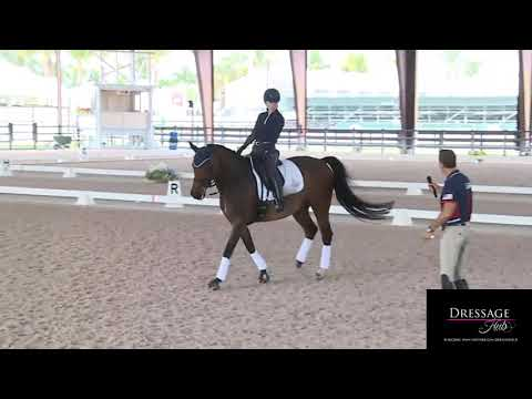 Robert Dover: When To STOP Using Your Driving Aid In Dressage