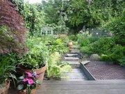 Harringay open gardens