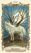 Cards of The Tarot