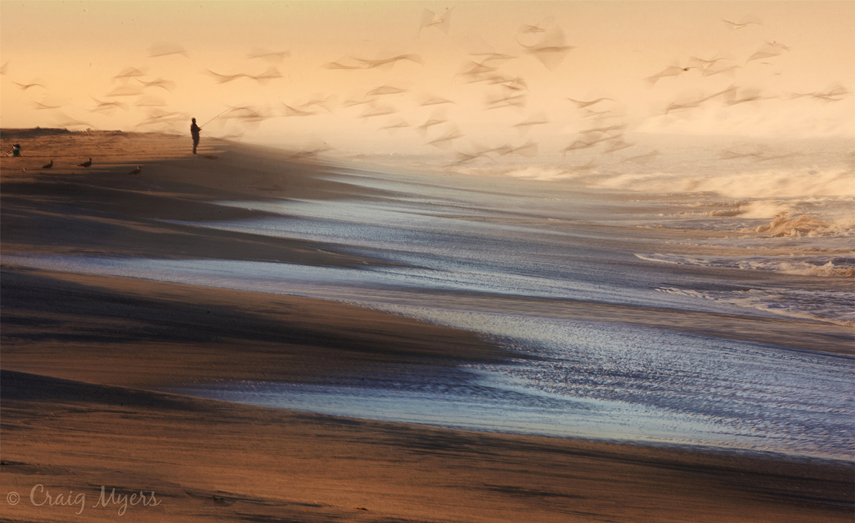 EPA2012, Qwelly, earth, nature, ბუნება, დედაბუნება, დედამიწა, ფაუნა, ფლორა, ფოტოგრაფია, ფოტოხელოვნება, ხელოვნება