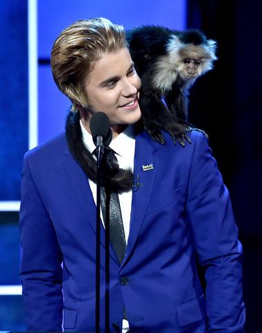 celebrities, chatter, exotic, pets, qwelly, გოჭი, ეგზოტიკური_ცხოველები, ენოტი, ვარსკვლავები, თხა, კენგური, კუ, ლამური, მამალი, უცნაური_ცხოველები, ქათამი, ღორი, შინაური_ცხოველები, ცნობილები, ჭორიკანა