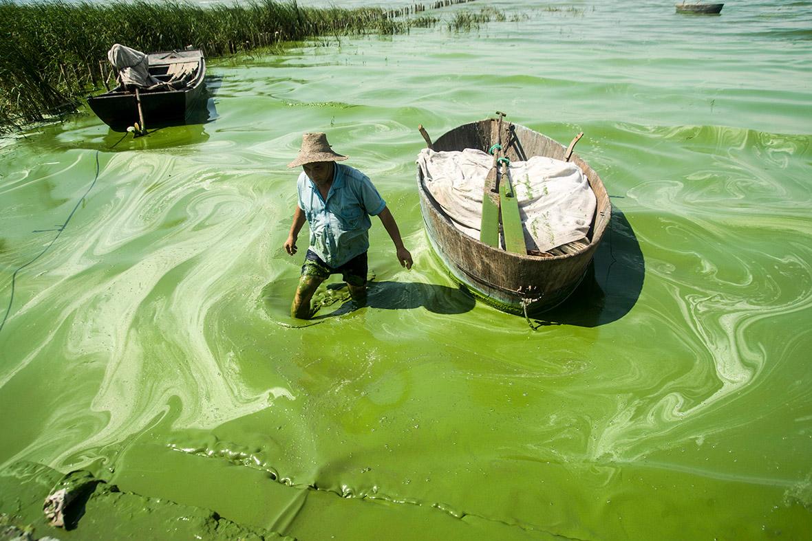 Anhui Province, Chao Lake, Chaohu, Chaozhou, Hefei, Jiao, Mushan Island, crabs, dragon, earth, heaven, island, lady, legend, qwelly, ანხოი, დედამიწა, ზეცა, კრაბები, კრევეტები, კუნძული, ლეგენდა, მარადმწვანე_ტბა, პროვინცია, ქალაქი, ჩაო, ჩაუჰუ, ჩინეთი, ცოდვა, წყალდიდობა, ხალხი, ჯიაო, ჰეფეი ტბები