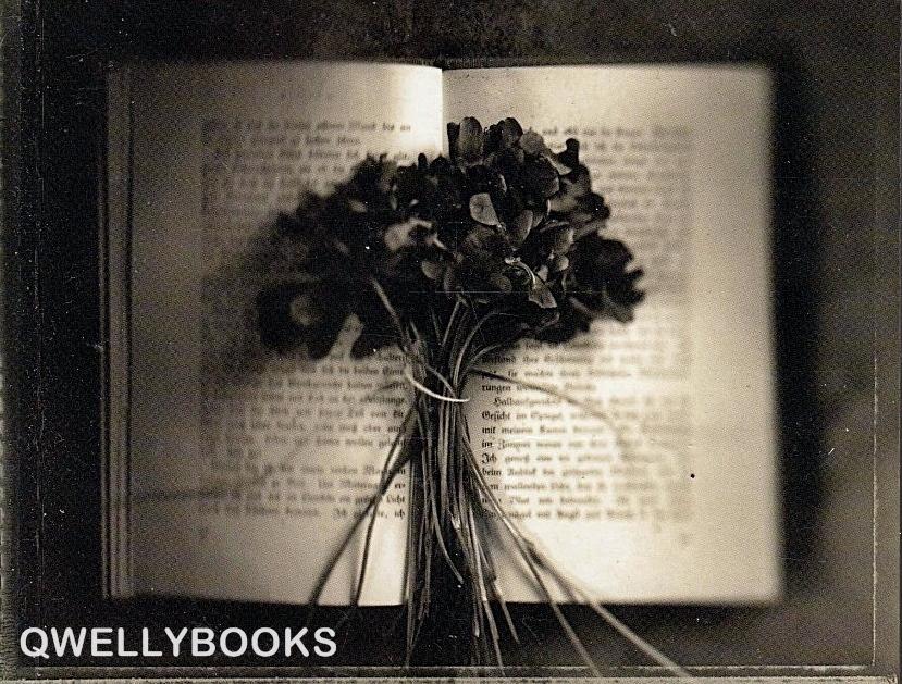წამკითხველი, ბერნჰარდ შლინკი, ელექტრონული წიგნები, წიგნები ონლაინ