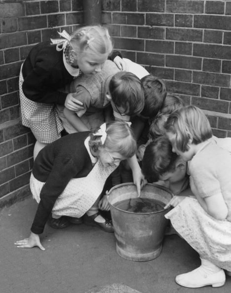 Solar eclipse at the South Harringay Primary school, 1954