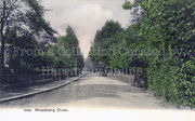 Woodberry Down circa 1910