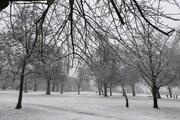 Finsbury Park on a snowy Sunday morning.