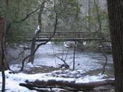A Snowy Abrams Creek