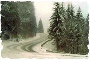 winter on 441