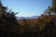 nature trail 037