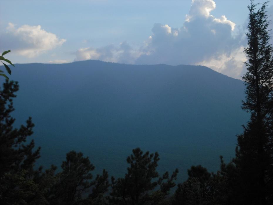 low gap trail and sutton ridge 015