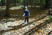 nature trail 027