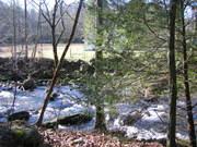 Cosby Creek across from SMNP entrance