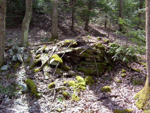 Mack Davenport Cabin Remains