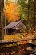 Carter Shields Cabin in Autumn