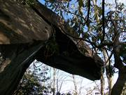 Overhang rock near Quilliams Place