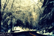 the road to cades cove