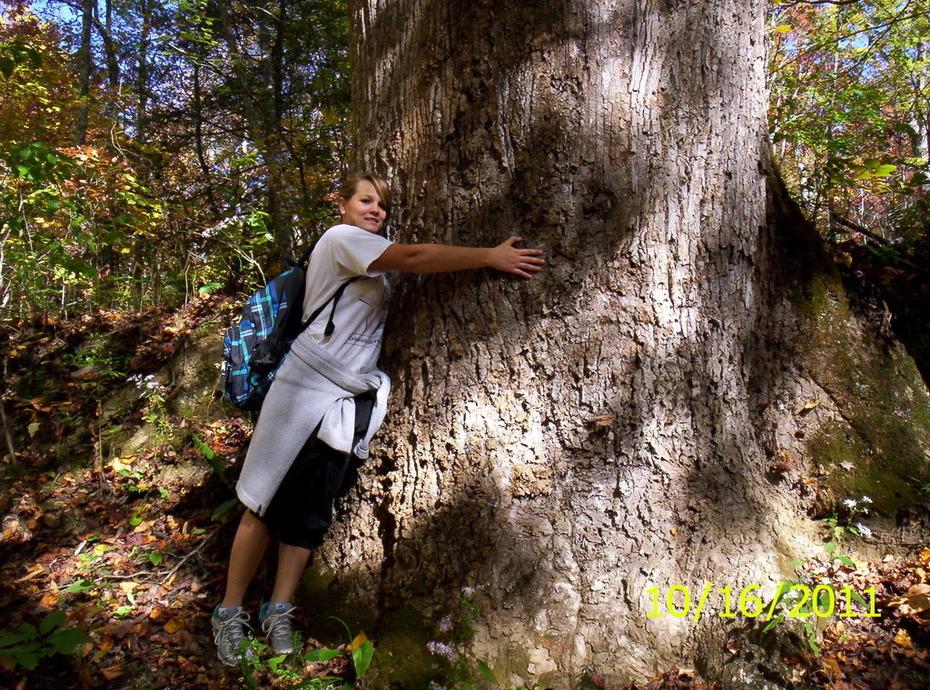 Brandi, the treehugger!!