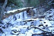 Log spanning Anakeesta Falls
