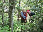 Rhodo Diving GoSmokies Hike