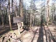 Spruce Flats MW
